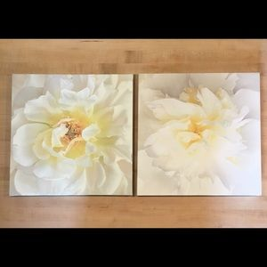 Other - Set of Flower Canvas Prints